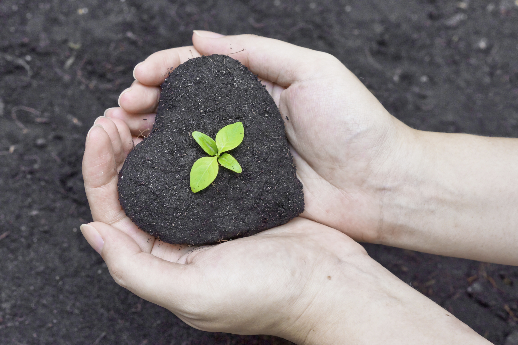 the importance of corporate social responsibility programs